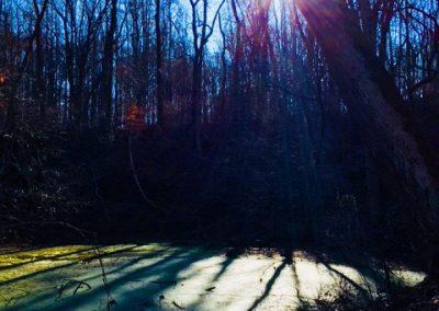 The fall quarry